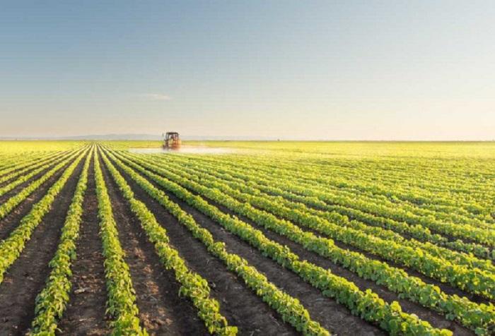 Licença ambiental para agricultura
